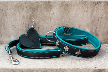 Hundeleine- und Halsband-Set Türkis