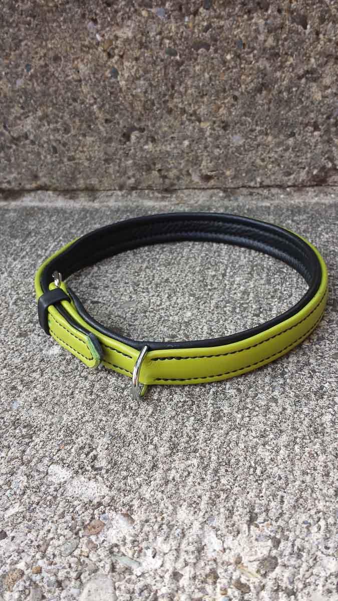 Hundehalsband aus Leder, schwarz-grün