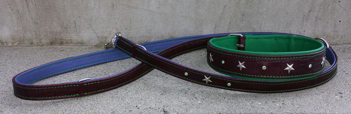 Hundehalsband und Hundeleine, dreifarbig
