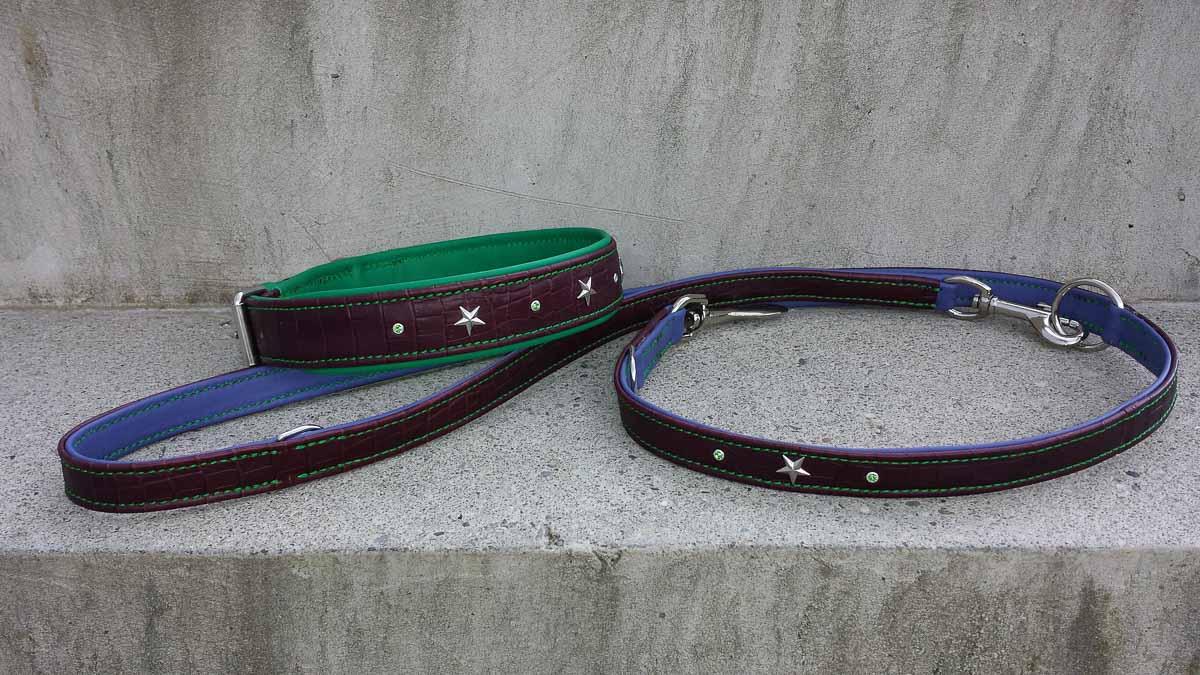 Set Hundehalsband und Hundeleine aus Leder