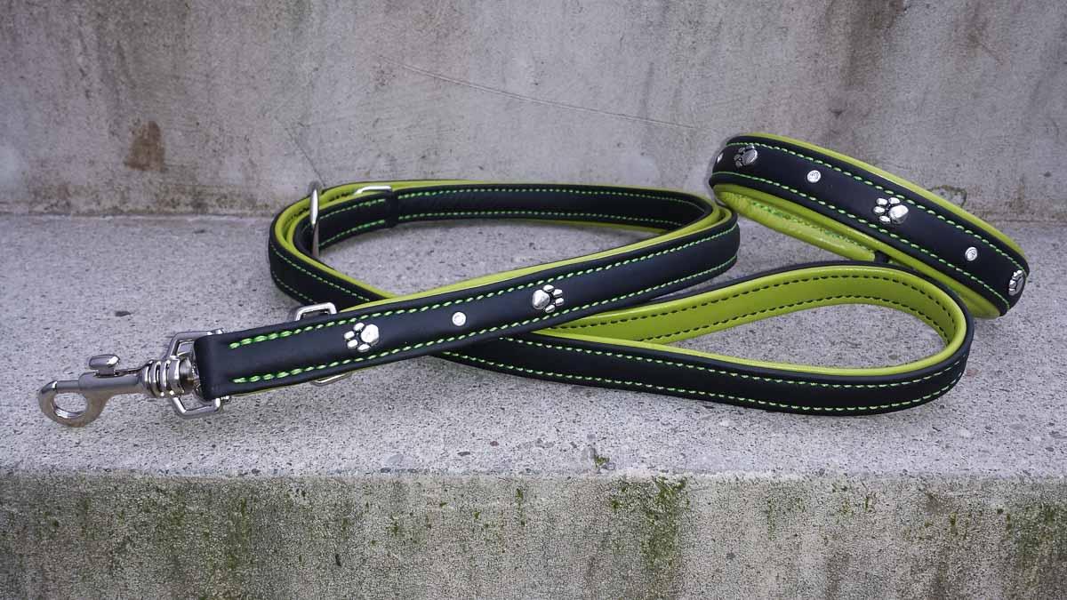 Hundehalsband und Hundeleine aus farbigem Leder im Set