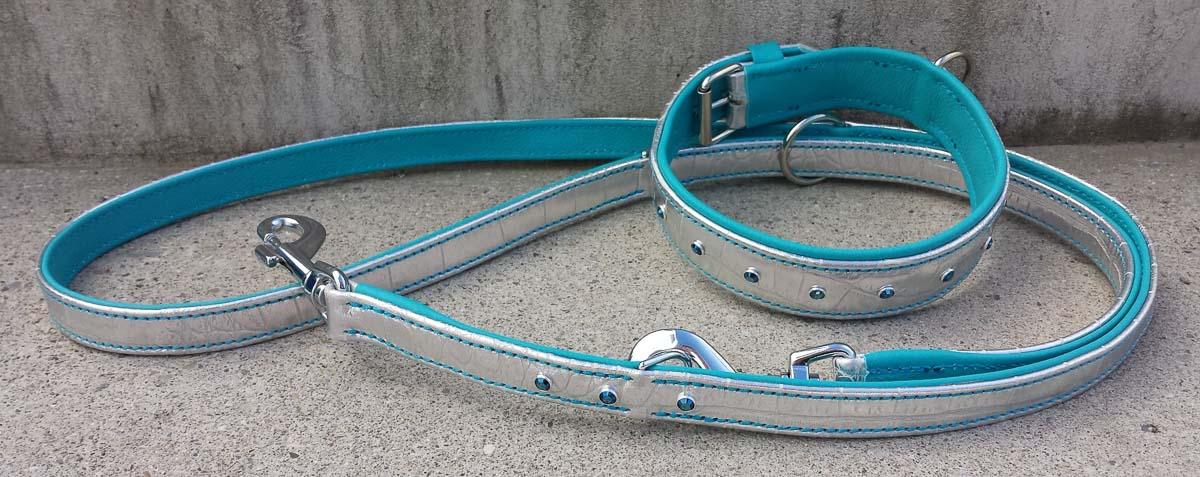 Hundehalsband und Hundeleine im Set, silber-türkis