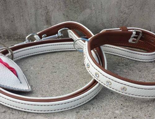 Set Leine, Halsband, RobiBag (weiss-braun)