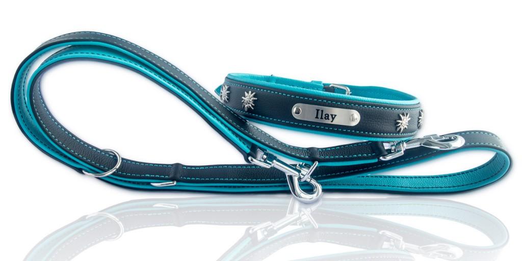 Hundehalsband und Leine, Schwarz-Türkis mit Namensschild