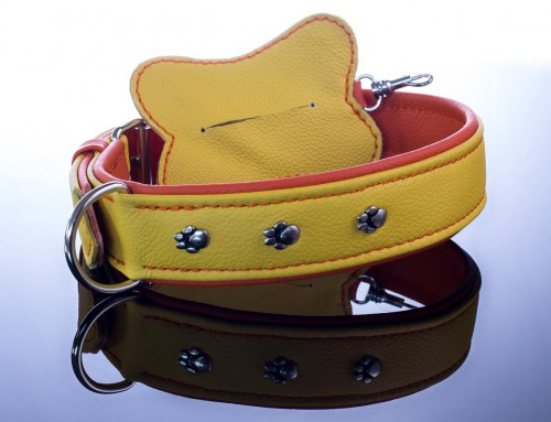 Halsband und RobiBag zitronengelb/orange