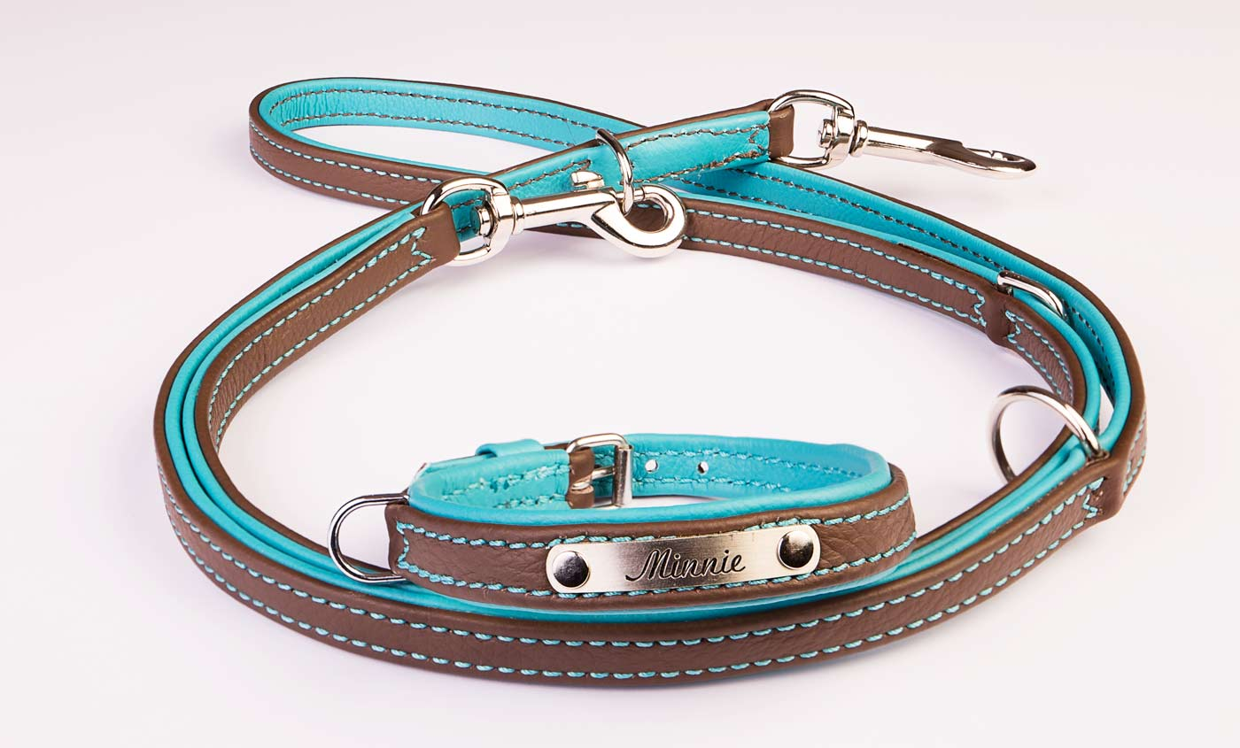 Halsband/Leine